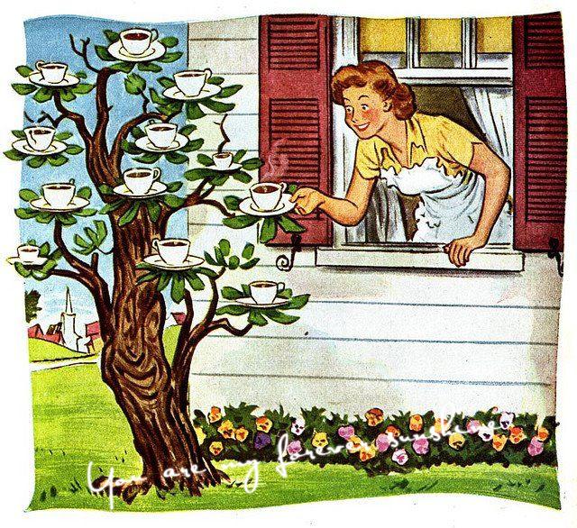Wholesale Non Hybrid Kona Coffee Bean Seeds Bonsai Tree Cottage garden