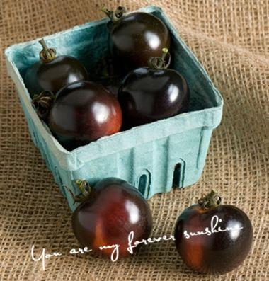 Wholesale Heirloom Indigo Rose Tomato Seeds Vegetable Cheap Easy Backyard Garden