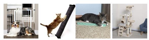 宠物床和家具