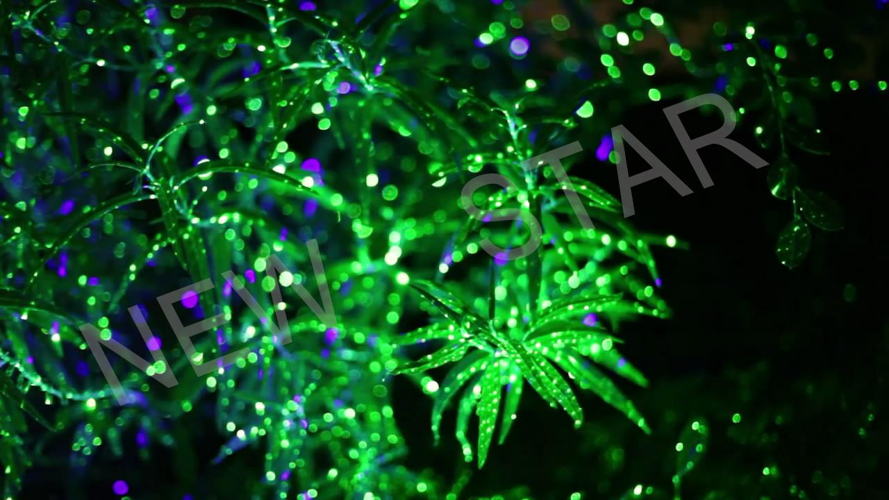 New Elf Light Christmas Light