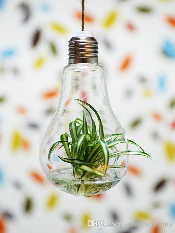 Glass Light Bulb Succlent Terrarium KitAir Planter