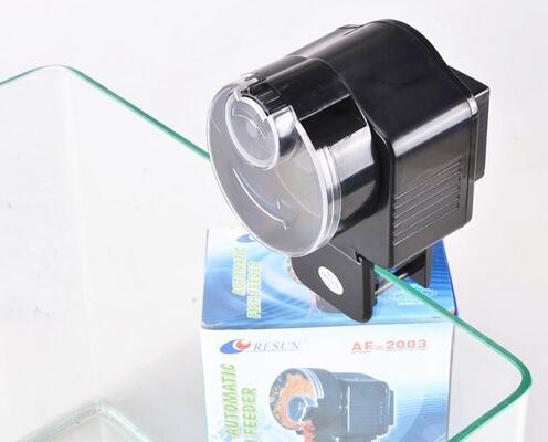 Best quality af 2003 automatic auto fish feeder for for Best automatic fish feeder