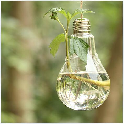 Light Bulb Glass Hanging Vase,Airplants Bulb Terrarium Set,Succulent Mos  Terrariums Housewarming Gift Green Gifts,Garden Decor Plants And Edibles  Hanging ...