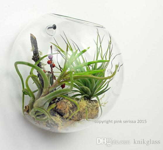 Bread type wall glass goldfish bowl fighting fish tank for Plant with fish in vase