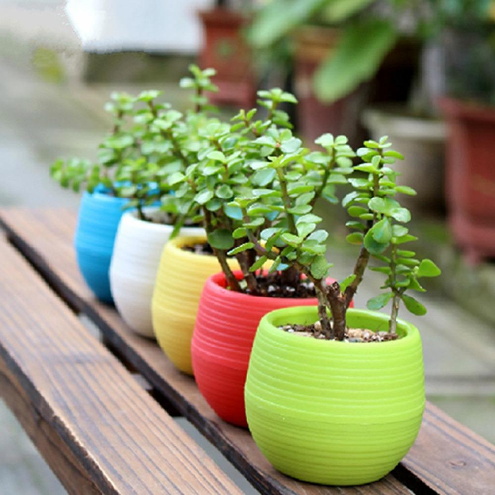 Hot Sale Wholesale Plastic Flower Pot Succulent Plant Flowerpot