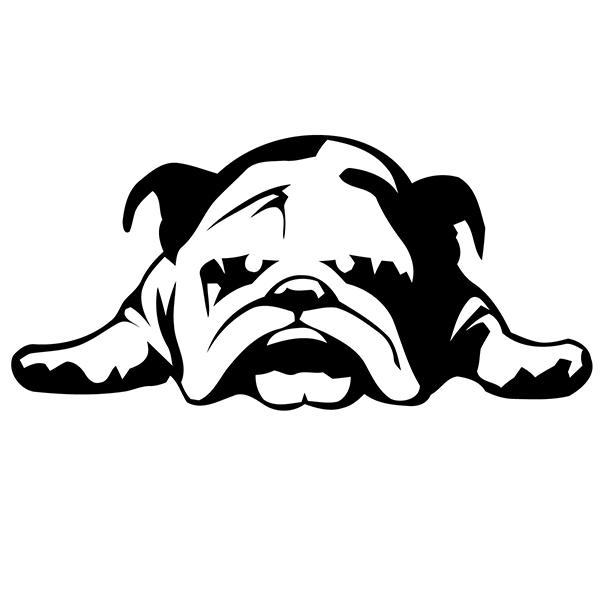 English Bulldog Tired Puppy Dog Rescue Vinyl Sticker For Car - Vinyl stickers