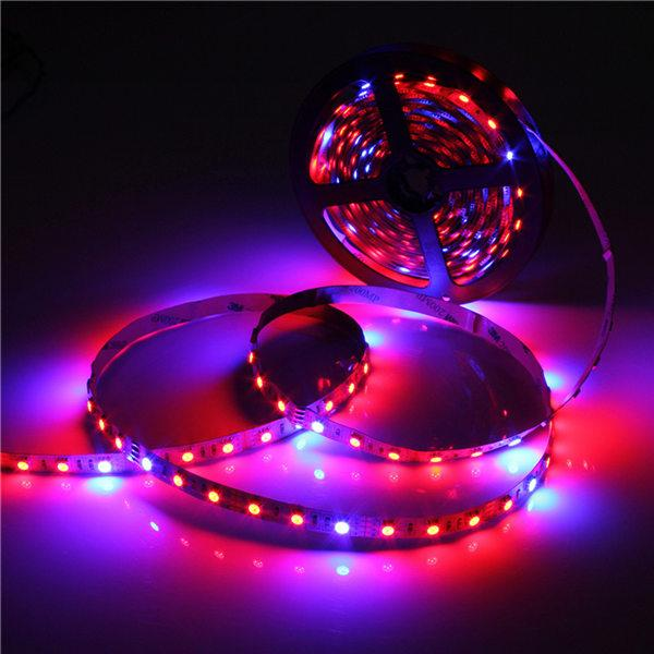 5050 Grow LED Flexible Strip Tape Light 41 4 Red 1 Blue Aquarium Greenhouse Hydroponic Plant Growing L& 60led/m 5M/Roll Grow Led Light Led Flexible Strip ... & 5050 Grow LED Flexible Strip Tape Light 4:1 4 Red 1 Blue Aquarium ... azcodes.com