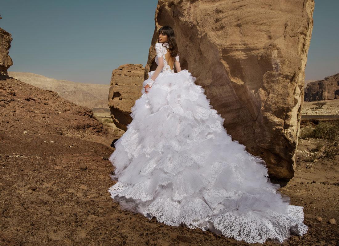 2016 Pnina Tornai Ball Gown Wedding Dresses Custom Made