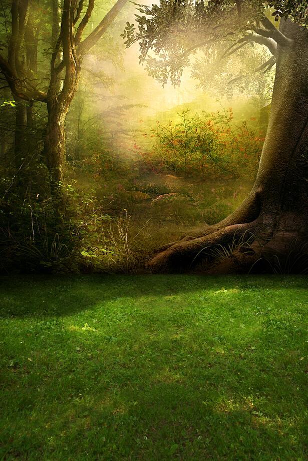 Online Cheap 200cm*150cm Backgrounds Morning Sunshine ...
