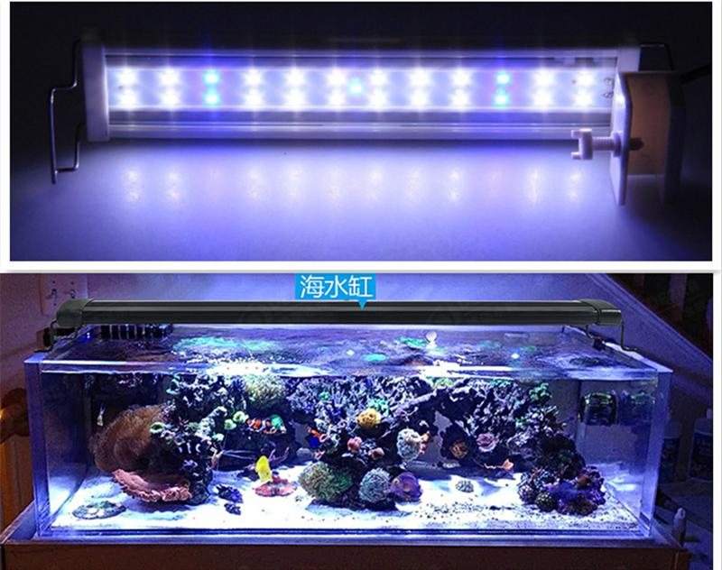 Best 25 led aquarium light 20l 5w blue and white lights for Black light for fish tank