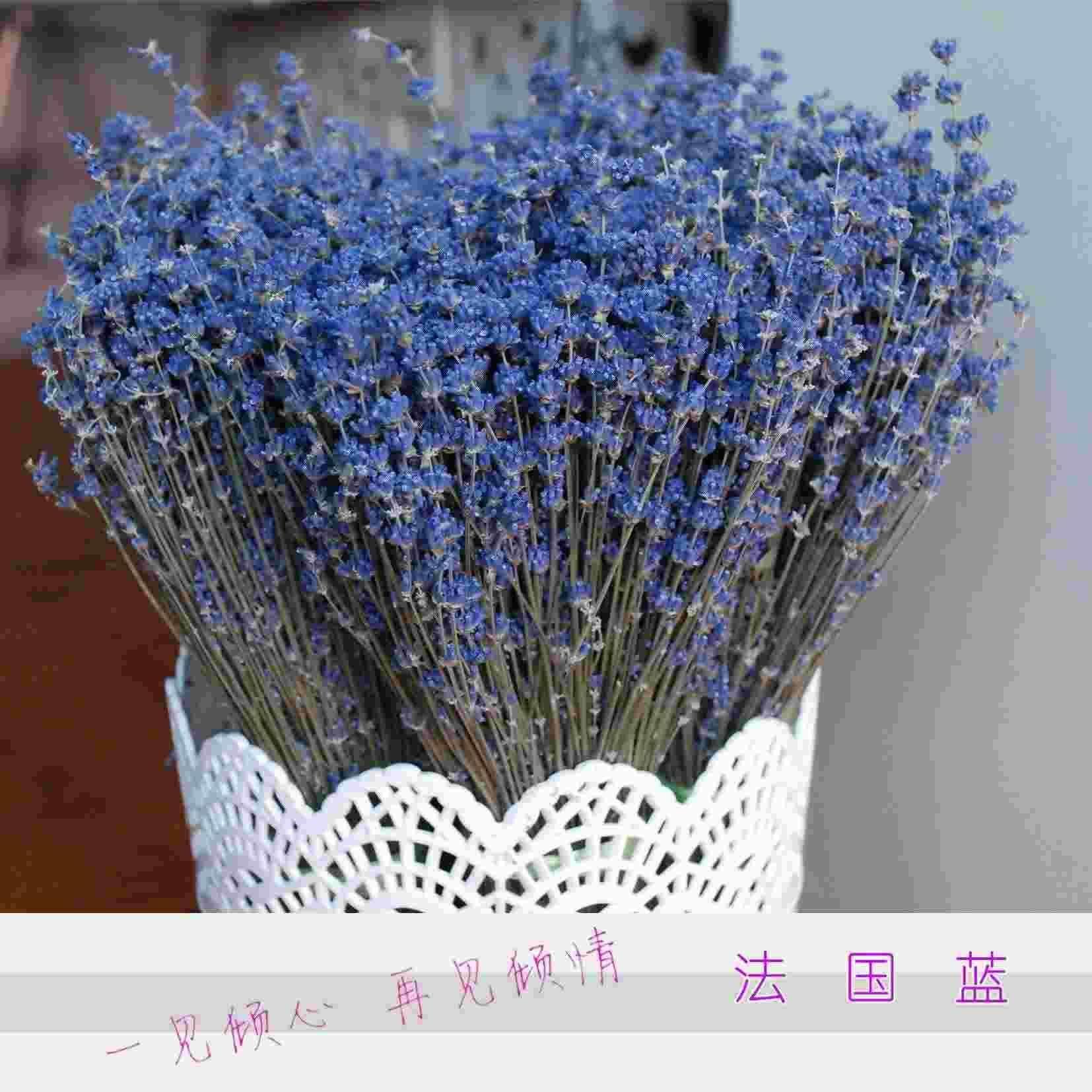 Купить сушёные цветы
