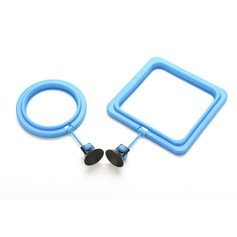 Aquarium feeding tool feeding fish in ring floating for Fish feeding ring