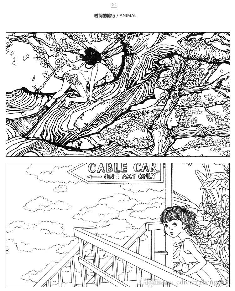 Coloring Book PrettyBaby Secret Garden Painting Drawing 24 Pages Animal Kingdom Enchanted Forest Relieve Stress For Children Adult Grafitti