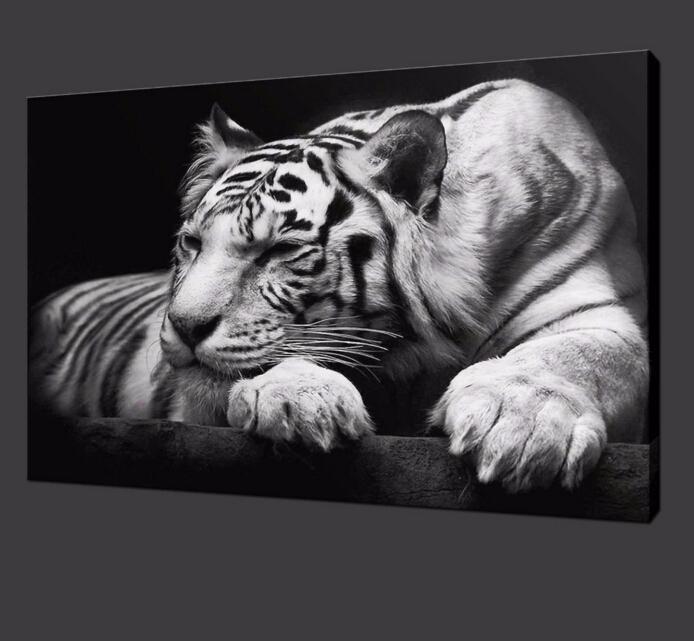 Animal Wall Art modern tiger wall art hd painting on canvas single animal prints