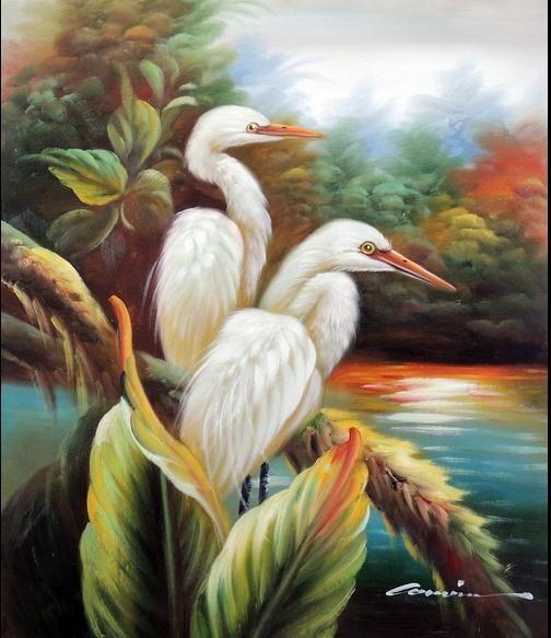 2018 birds great white egret heron everglades swamp rain for White heron paint