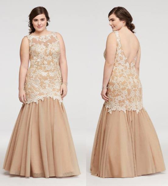 plus size prom dresses 2017 vintage lace evening gowns