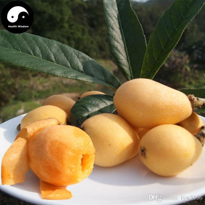 buy loquat fruit tree seeds plant loquat fruit grow chinese, Beautiful flower