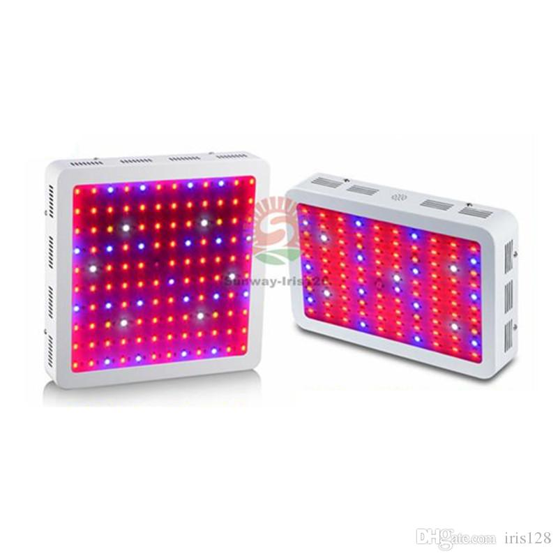 Full Spectrum 1000w 1200W 1600W 2000W LED Grow Light Double Chip Led Plant Lamp