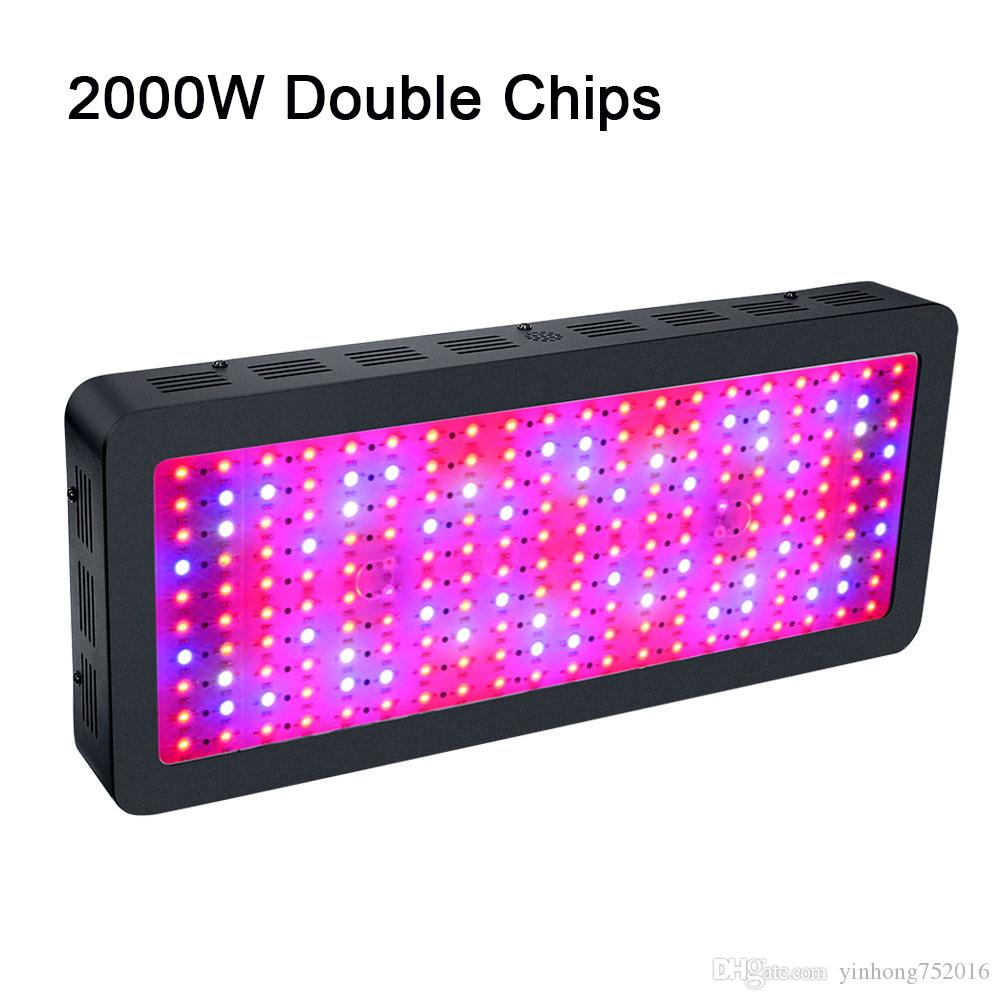 Le meilleur LED Grow Light Full Spectrum 300W / 600W / 800W / 1000W / 1200W / 15