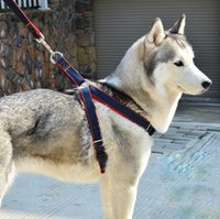 Free shipping Denim leash, dog rope \ small dogs medium dogs...
