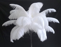13colours DIY Ostrich Feathers Plume Centerpiece for Wedding...
