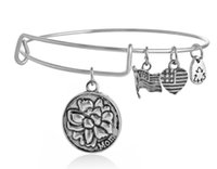 2015 Alex&Ani silver and gold plated simple wiring Alex and ...