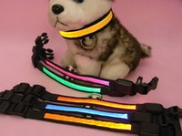Nuevos 6 colores LED parpadeante collar collar del animal doméstico LED collar de perro / collar del gato freeshipping