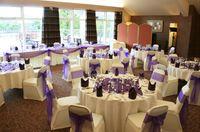 Custom any colour New Fashion Wedding Party Banquet Organza ...
