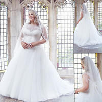 2017 Plus Size Wedding Dresses Gowns A- line Sheer Tulle And ...