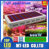 High QI led Plant growth lamp 600W 14400lm Full Spectrum LED...