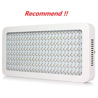 Factory Price 3 Year Warranty 600W Led Grow Light Full Spect...