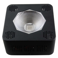 full spectrum 3w chip led grow lights 200w cob led grow ligh...
