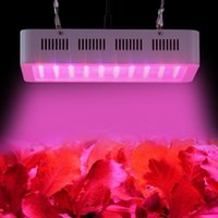 Hot Sale MINI 300W Led Grow Light Full Spectrum Panel Lamp 1...