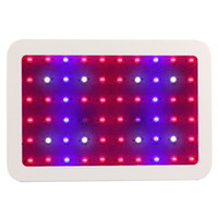 High Quality Double Chips 600w LED Grow Light Full Specturm ...