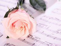 Новые поделки алмазов картина вышивки крестом наборы смолы вставили картины полный квадрат бурильных рукоделием Мозаика Home Decor цветок розы zf0121