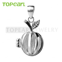 SWP08 Teboer Bijoux 5pcs Apple Cage 925 Sterling Silver Love Wish Pearl Pendentif