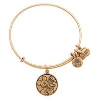 Alex Ani Bracelets Alliage Pendentif Bracelets Charme Alex Ani Bracelets Vintage Bracelet Pulseras Or Pour Femmes JS017AL012