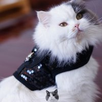 batman leash - 2015 New Style Giltter Dog cats batman harness with ghost charm pets protect vest leash set non pull DR006