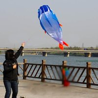 Wholesale B39On Sale D Kites Huge Parafoil Giant Dolphin Blue Power Kite Outdoor Sports Easy to Fly