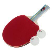 Wholesale Table Tennis Paddles with Ping Pong Balls NINJA N1002 Sports Star
