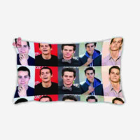 beautiful fabric designs - Beautiful Orginal Design Dylan Obrien Style Wallpaper Pillow Case Comfortable Fabric Soft Throw Cover x30Inch