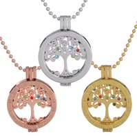 bead pendant holder - Mi Moneda mm My Coin Holder Pendant Lokcet Necklaces With Interchangeable Tree of Life Charms Inlaid Rhinestone With cm Bead Chain