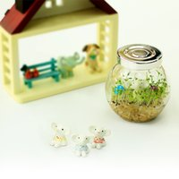 air plant agents - heart shaped grass potted plants purify the air micro landscape office mini plant pot Free Agent