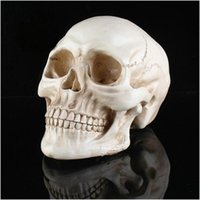 Wholesale GN M024 Resin skull mask men mask women mask cosplay mask costume mask scared mask for adults without pedestal and children with pedestal