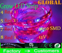 led strip light led strip lamp led flexible strip - 5M Grow LED Strip Red Blue Full Spectrum Lights Lamp For Flower Plant Hydroponics System Grow Box Waterproof IP65 Flexible LEDs M DC V