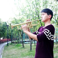 trumpet bb - Trumpet Bb B Flat Brass Phosphor Copper Exquisite with Case Mouthpiece Cleaning Brush Glove Strap order lt no track