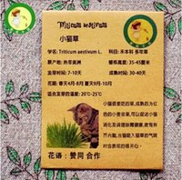 amino acid - Cat grass seed kitty like food rich in chlorophyll amino acids and other nutrients Seed particles