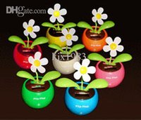 Wholesale Flip Flap Solar Flower Assorted Colors this toy can be send to all the children including boys and girls