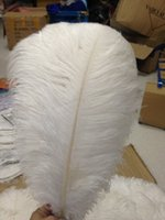 Wholesale High Quality cm inch Precious White Fluffy Ostrich Feathers Plume Wedding Variety of Decorative