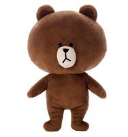 Wholesale Line Brown Bear S